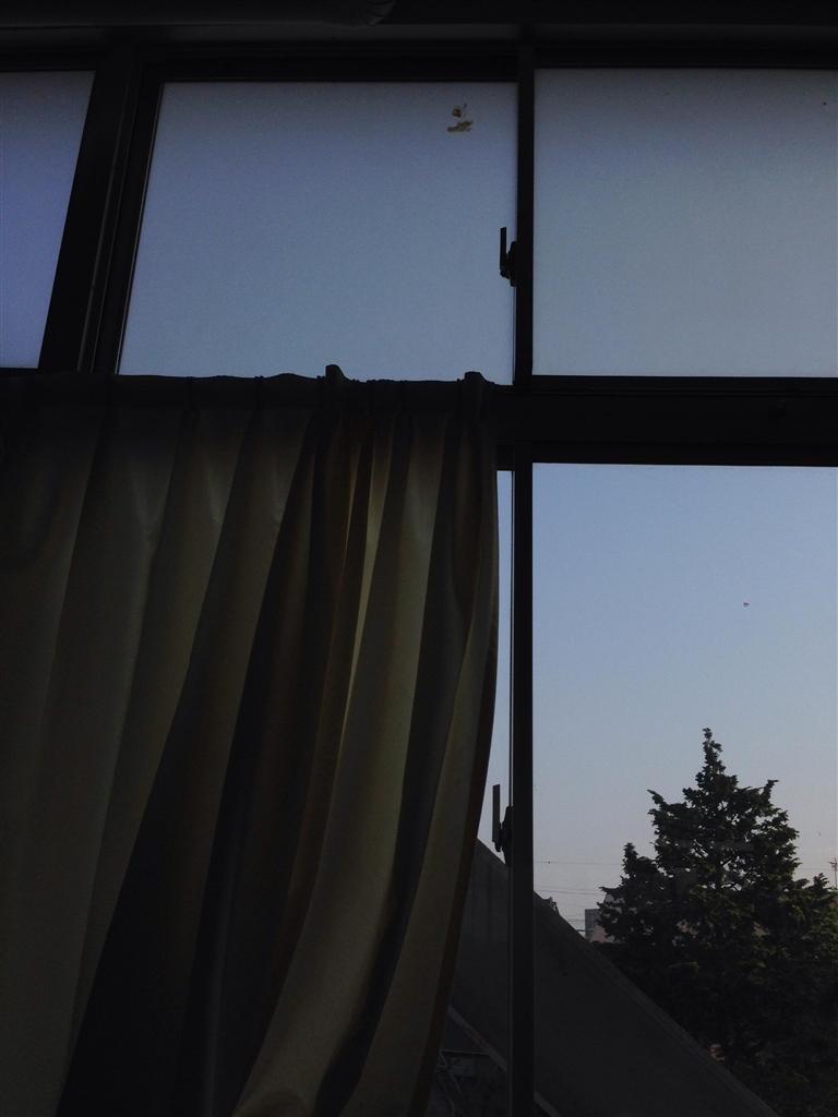 価格.com - 『最初は窓のゴミか...
