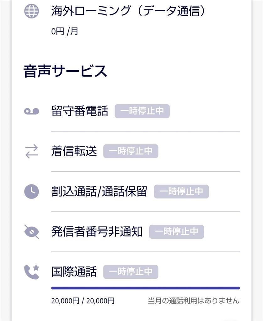 電話 国際 楽天 モバイル